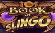 bookofslingo