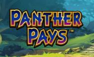 pantherpays